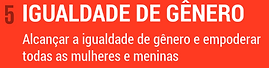 ODS5texto.png