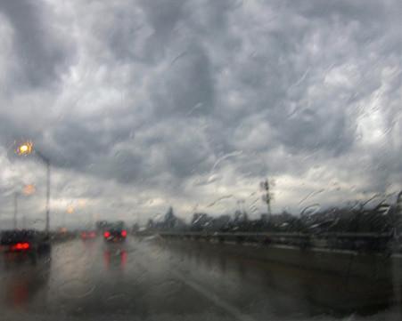 Austin Rain