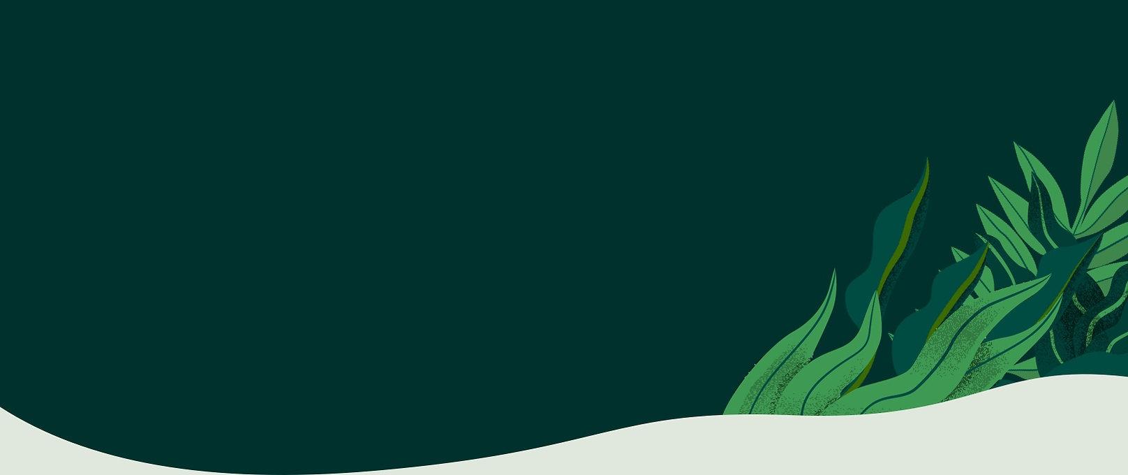 for plant shops_banner.jpg