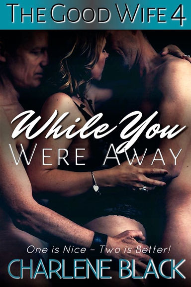 While You Were Away