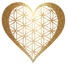 Flower heart gold fine transparent small