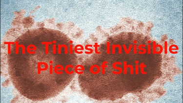 THE TINIEST INVISIBLE PIECE OF SHIT (SHORT)
