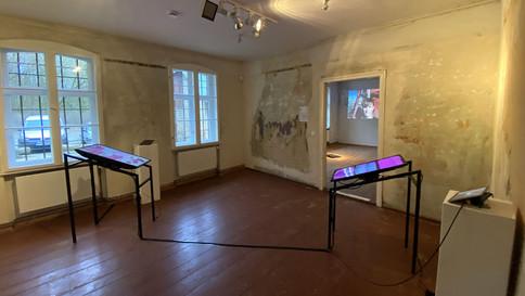 Dagmar Schürrer, Virtualized, 2019/20, Videoinstallation und AR-Anwendung