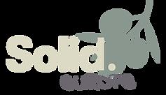 logo Solid Europekopie.png