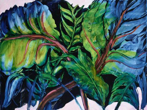 1. Rose-veined leaves #1