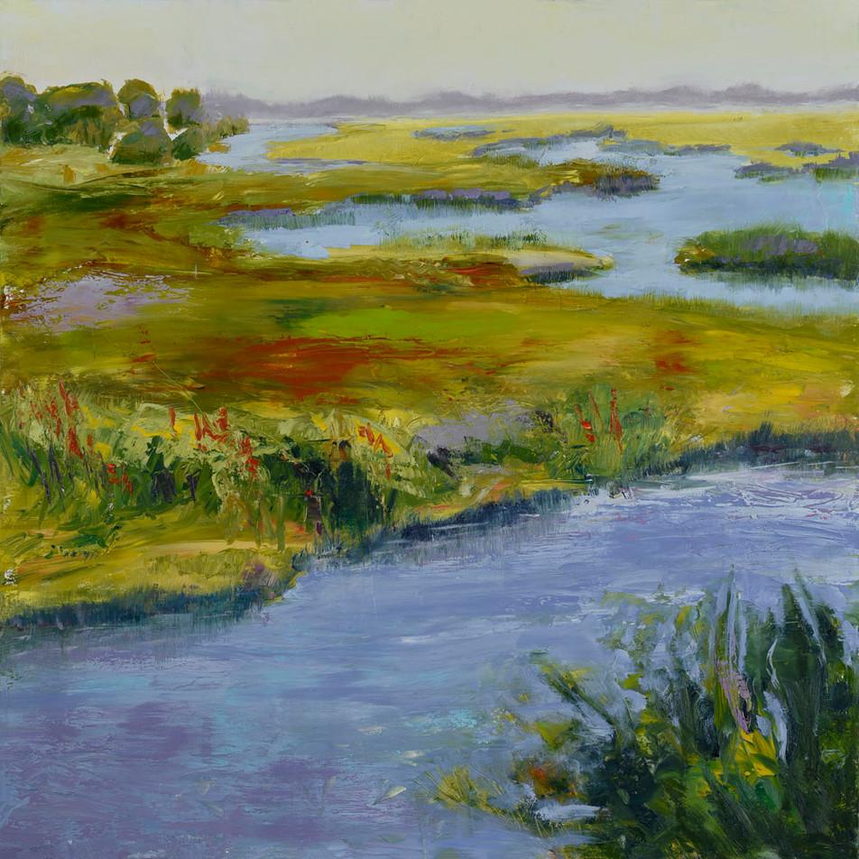 21. Grasslands