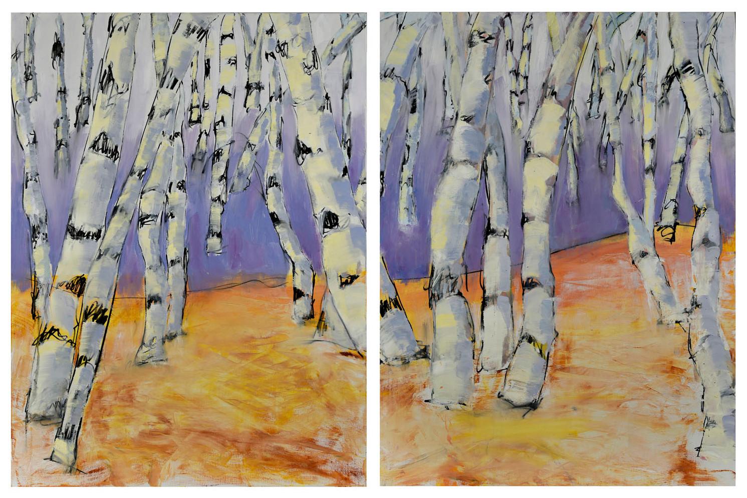 Noble Birch Trees #1 #2