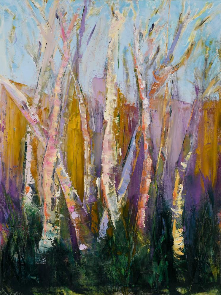 Elegant Birch Trees #2