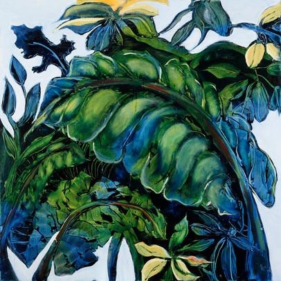 7. Leaf patterns