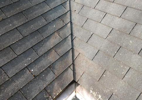 DE Roof Washing.jpg