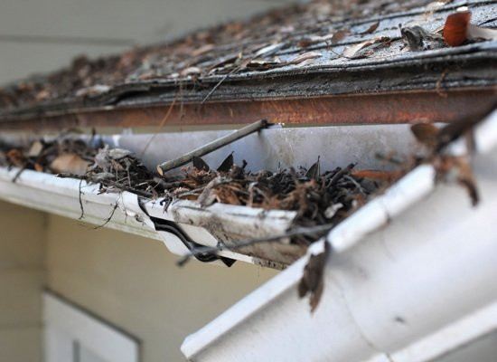 """<img src=""""gutter cleaning.png"""" alt=""""gutters have ripped from home due to being filled with leaves"""">"""