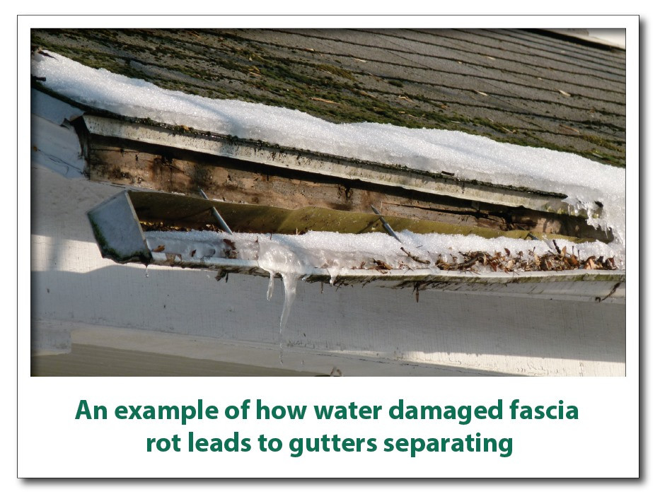 """<img src=""""gutterdamage.jpeg"""" alt=""""How water damaged fascia rot leads to gutters separating"""">"""