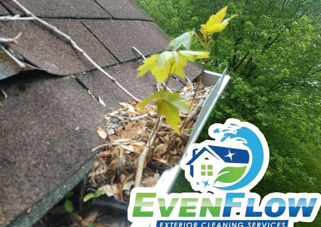 Need Gutter Repaired or Replaced?