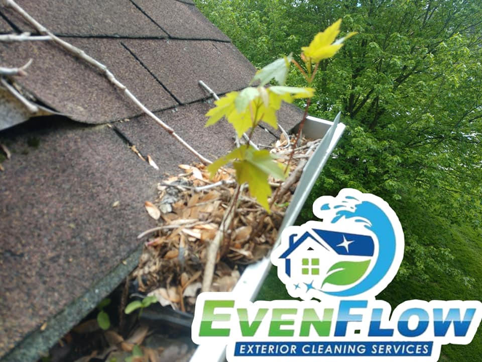 EvenFlow Gutter Cleaning