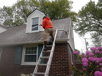 """<img src=""""roof washing.png"""" alt=""""washing a roof to remove mold and dirt"""">"""
