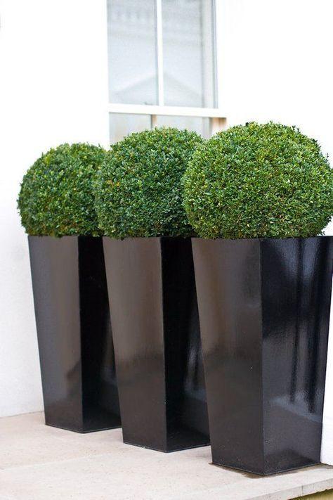 Garden Designer London _ Patio planters