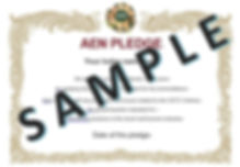 AEN pledge sample.jpg