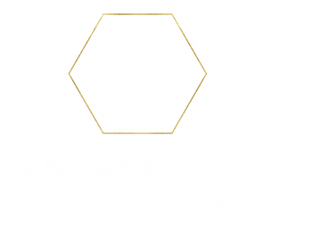 logo wit png2.png