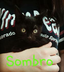 SOMBRO