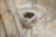 Mian Xiang, Leitura de Rosto chinesa, leitura de rosto, fisionomia, fisonomia tradicional chinesa, Fisiognomia