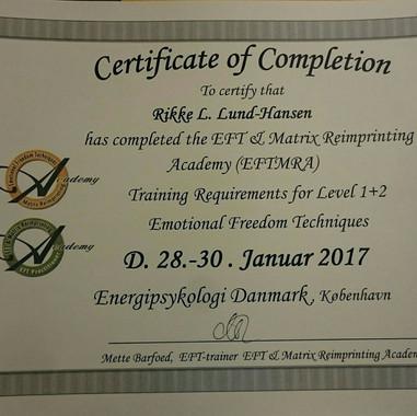EFT-reimprinting-kursus.jpg