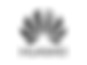Huawei-logo-GREY.png