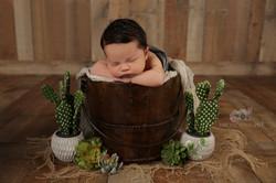 Newborn photos Las Vegas photographer