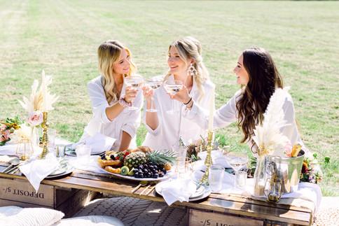 Bridal breakfast - luxe picnic