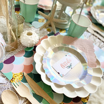 Mermaid picnic-close up.jpg