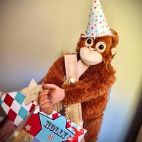 Circus monkey.jpg