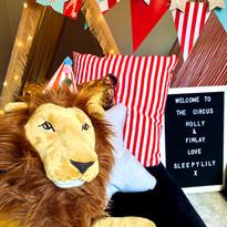 Circus lion.jpg