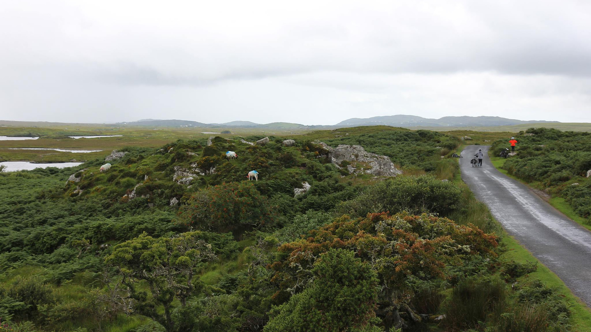 Ireland10