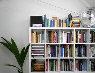 Bookshelves_great level shot_edited.jpg