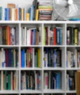 Bookshelves_great level shot.JPG