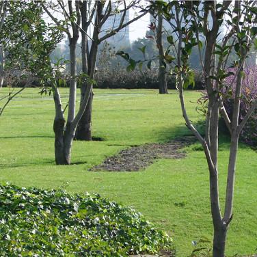 05_jardines5.jpg