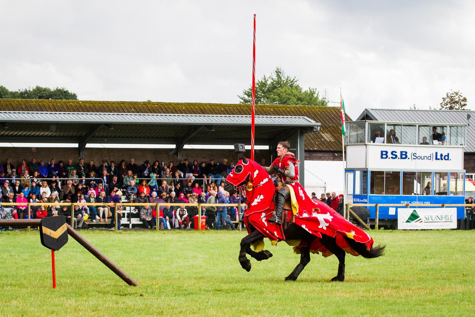 The Company of Horsemen- rearing knight.