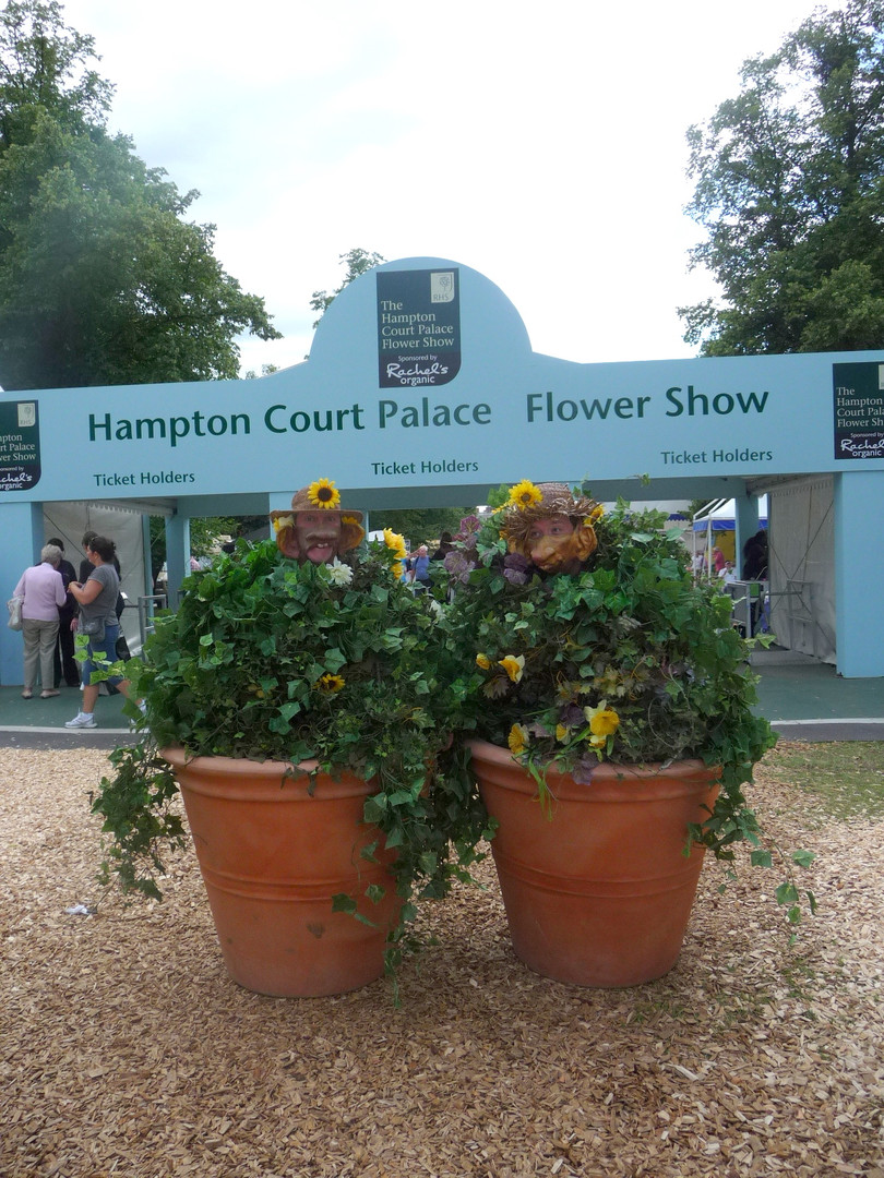 flower pots.jpg