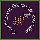 Carrol County-logo.jpg