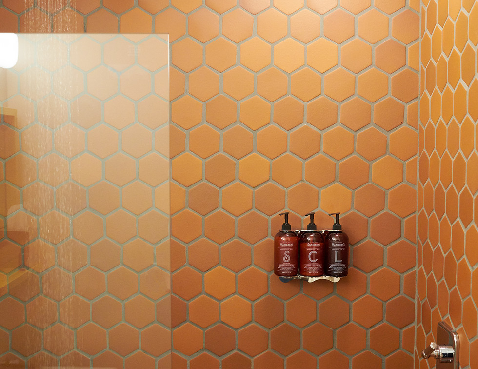 SCL_bathroom_2_DLT.jpg