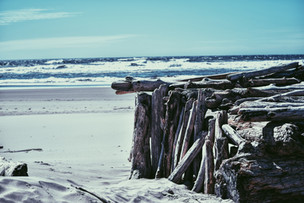 Driftwood Beach Hut