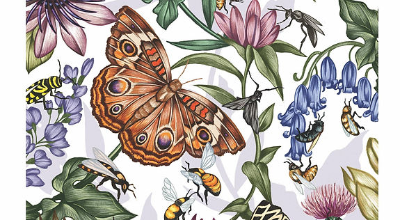 pollinatorpic.jpg
