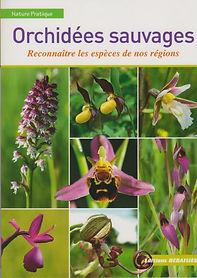 un-livre-pour-reconnaitre-les-orchidees-