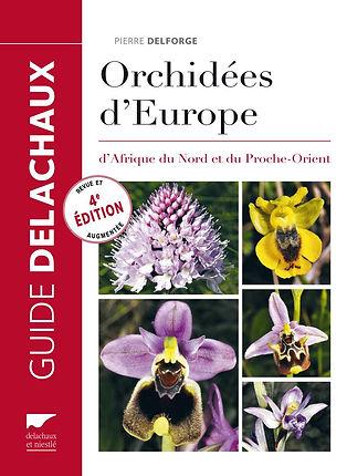 Orchidées_d'europe.jpg