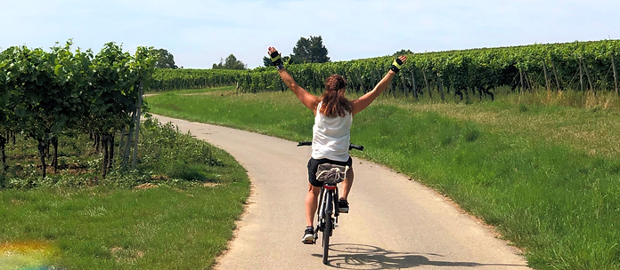 ebike Verleih Seuferle Südpfalz Fahrradverleih Schweigen-Rechtenbach