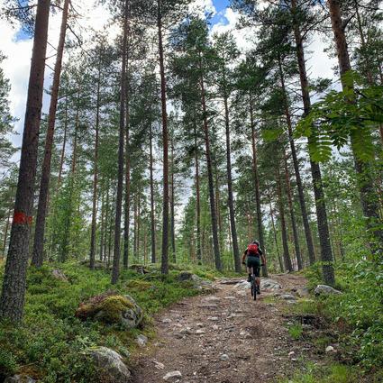 Bollnäs - en fin cykling