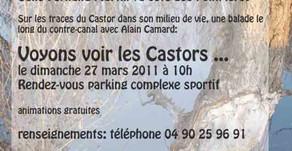 """Affiche """"Printemps des Castors"""""""