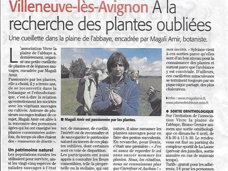 Midi Libre 05/04/2018 - A la recherche des plantes oubliées