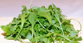 Plantes comestibles, salades sauvagement bons !
