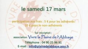 """Sortie """"Cueillette de salades sauvages dans la Plaine de l'Abbaye, le samedi 17 mars 2012 à 14h"""