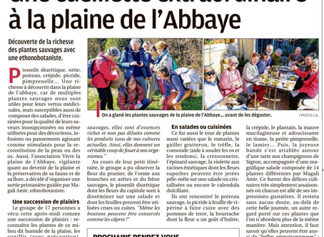 Article La Provence 26/02/2020